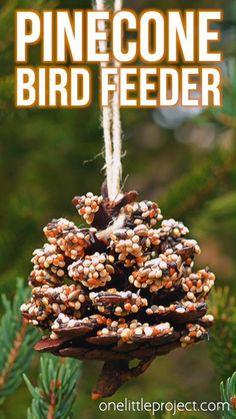 winter crafts for tweens ! winterhandwerk für tweens winter crafts for tweens ! For Students winter crafts. Bird Feeder Craft, Pine Cone Bird Feeder, Bird Seed Feeders, Wild Bird Feeders, Suet Bird Feeder, Make A Bird Feeder, Best Bird Feeders, Christmas Crafts For Kids, Fall Crafts