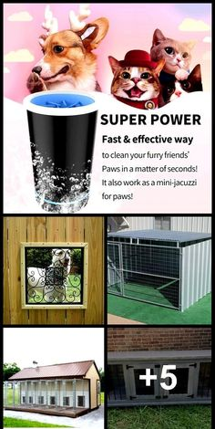 ADVERTISEMENT 30 Tips To Improve Your Cheap Dogkennel Like us, dogs deserve an appropriate place for themselves. Cheap Dog Kennels, Diy Dog Kennel, Large Dog Crate, Large Dogs, Dog Kennel Panels, Wonderful Picture, Cover Pics, Dog Paws