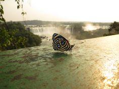Brazil's Iguassu Falls, where Belmond Hotel das Cataratas lies just a few steps from this wonder of nature.