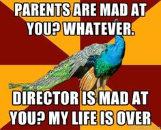 Director is mad at you? Go home and cry yourself to sleep.
