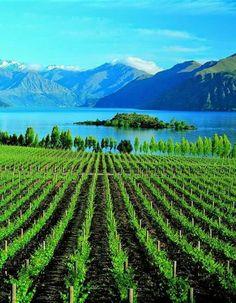 Lake wanaka..New Zealand