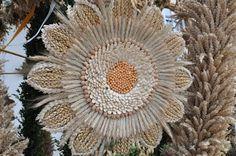Uroczy detal Dandelion, Flowers, Plants, Decorations, Dandelions, Flora, Plant, Royal Icing Flowers, Flower
