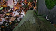 Zen Garden Zen, Texture, Colors, Wood, Crafts, Garden, Madeira, Garten, Woodwind Instrument