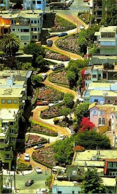 .Lombard St. Crookedest street in the world