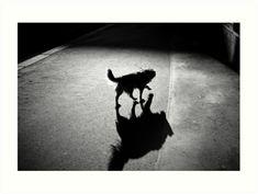 Black and White Street Photography Art Print for Sale #dogonstreet #streetphotography #streetdog #bwstreet #bwstreetphoto #streetphoto #leica #leicaphoto #luciaeggenhoffer