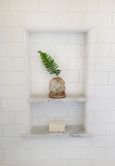 white subway tile shower niche fern leaf