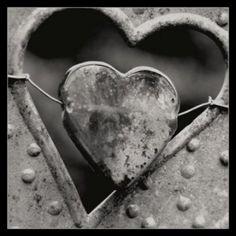 disperato amore