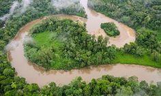 Ecuador drills for oil on edge of pristine rainforest in Yasuni