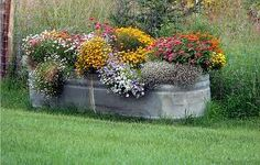Galvanized trough....great planter