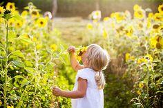 sonnenblumenkind by riskonelook on DeviantArt Children Photography, Flower Girl Dresses, Deviantart, Couple Photos, Wedding Dresses, Inspiration, Farming, Gardens, Party