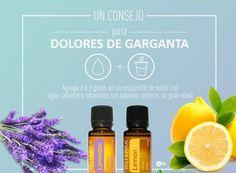 Los más usados: Peppermint, Lemon, Melaleuca (árbol del Té), Orégano...