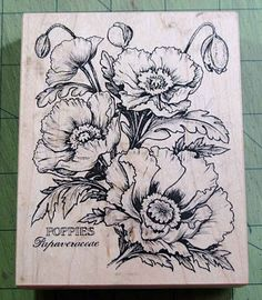 """Poppies - By far """"one"""" of my fave flower stamps from psx. Love coloring this one."""