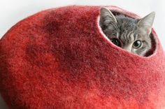 23 Insanely Clever Products Every Cat Owner Will Want @sam_c11 check out number 18