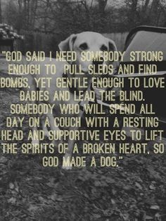 Who doesn't love a #dog #quotes