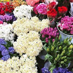 Starting a new week, expectations, wishes, beginnings... #wishyougreataweek  BAGDAT CADDESI & BAGDAT STREET KADIKOY ISTANBUL TURKEY