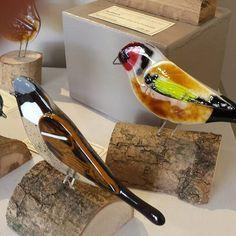 @gannetglass Ann Donnelly's #fusedglass birds don't hang around for long. #gardenbirds #robin #finches #bluetit #glassforsale #glass #galleriesoninstagram #gallerywall #gallery