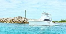 Deep Sea Fishing - Private 4 hours