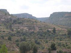 Pascual Ortin Lecina   Para hoy lunes os dejo esta fotografía del pueblo, de sus montes llenos de hierbas aromáticas