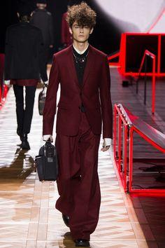 Défilé Dior Homme homme Automne-Hiver 2016-2017