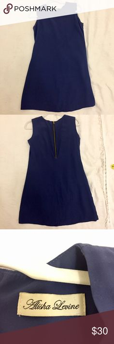 Alisha Levine Silk Navy Blue Shift Dress Alisha Levine Silk Navy Blue Shift Dress with Zip Back.  The perfect day to night dress.  Wear it to the office and let your hair down at happy hour.  Fits like a glove! Alisha Levine Dresses Midi