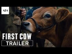 First Cow Official Trailer Directed by Kelly Reichardt Upcoming Movies, New Movies, Movies To Watch, Good Movies, Movies Online, John Magaro, Oregon Territory, Free Trailer