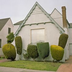 beautiful or ugly?        the photograph  by Kurt Manley is made so well, that you oversee the poor planting of the small front garden, despite the whimsical shapes of the bushes ;  What a freaky gardening!