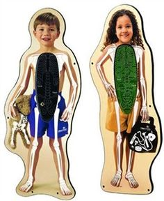 Encourage your young waiting area patients to learn about the insdies of their body, or explain an injury or illness in a non-threatening way. The Buddy & Bonita Skeleton Magic Wall Toy Set is anatomically correct ideal for teaching or just play.