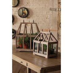 Wood and Glass Terrarium, Set of 2