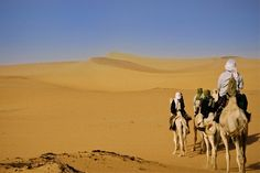 Camel journey through the Sahara, Niger. Adventures with Adventure Alternative