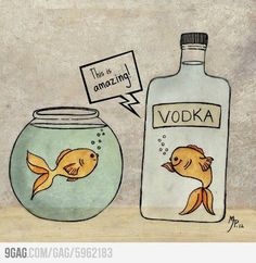 You Drunky Fish