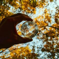 Capture rich moods within a  perfect wide-angle ball 🍁🔮 Incredible photograph by @jordivanderweg - his work is absolutely stunning! 🔥