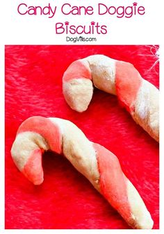 Today we're sharing a festive Candy Cane dog treat recipe that's perfect for your dog's holiday stocking! As long as your dog doesn't have issues with flour, it's also a hypoallergenic dog treat! Diy Dog Treats, Homemade Dog Treats, Dog Treat Recipes, Dog Food Recipes, Doggie Treats, Healthy Recipes, Candy Cane Biscuits, Dog Biscuits, Hypoallergenic Dog Treats