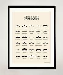 Field guide to moustaches