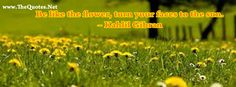 Be like the flower,turn your faces to the sun. #flower #sun #quote