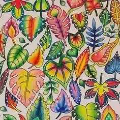 葉っぱの色見本作成中です#コロリアージュ #おとなの塗り絵 #大人の塗り絵#magicaljungle #johannabasford…