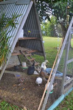 this is a beauty! chook house Raising Ducks, Raising Chickens, Backyard Chicken Coops, Chickens Backyard, Duck House, Hen House, Duck Enclosure, Chook Pen, Duck Coop