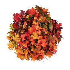 Fall Foliage Bushes  Available at Michael's 2012