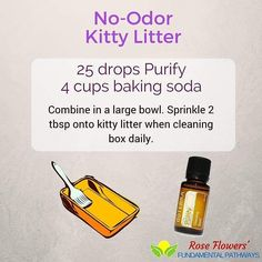 I really wish we had some essential oils when I was a kid. Would have made changing the kitty litter just a bit more appealing.  #essentialoils #diyrecipe