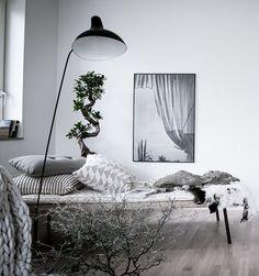WEBSTA @ bjurfors_goteborg - Vackert på Sonya Hedenbratts Gata 1, styling @styledbyemmahos, Bjurfors/Alen Cordic #dagbädd #scandinavianhomes #interiorstyling #inredningsinspo #bjurfors_goteborg #bjurfors