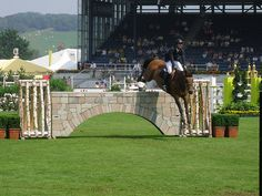 Show jumping!!!! To be a part of it..