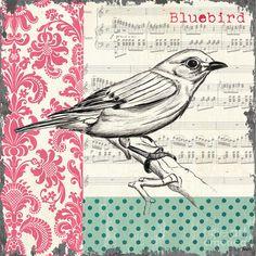 Vintage Songbird 1 Painting  - Vintage Songbird 1 Fine Art Print