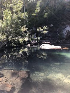 You can see straight through the water to the bottom at Gudda Gumoo Walk at Blackdown Tableland National Park. Camping In Tennessee, Florida Camping, Acadia National Park Camping, Sky Go, Destinations, Lake Arrowhead, Beautiful Waterfalls, Camping World, Blue Mountain