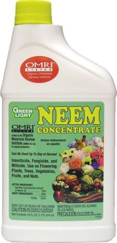 Green Light Organic Neem Concentrate - advised by IPM management at Oklahoma State. Biological. OMRI approved.