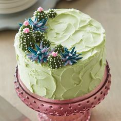 Create a beautiful edible arrangement with this Desert Oasis Succulent Cake. Using a variety of techniques, you can create adorable succulents that almost look too pretty to eat! Cupcakes, Cake Cookies, Cupcake Cakes, Deco Cactus, Cactus Cake, Beautiful Cakes, Amazing Cakes, Cake Piping, Salty Cake