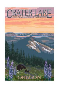 Crater Lake National Park, Oregon - Spring Flowers and Bear Family Posters by Lantern Press at AllPosters.com