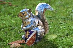squirrel in armour
