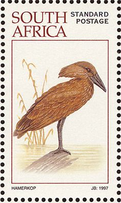 Stamps showing Hamerkop Scopus umbretta, with distribution map showing range Shoebill, Postage Stamp Collection, Postage Stamp Art, Art Folder, Wild Creatures, Vintage Stamps, Bird Drawings, African Animals, Kingfisher