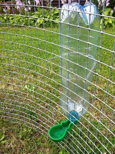 Bottle Holder Drinker Chicken Quail Bird Caged Pop Bottle Rabbit Hatching eggs