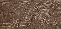 Unfold the great enigma of the unique Nasca Lines, with the naked eye from the window of an airplane, you'll spot the outlines of a parrot, hummingbird, spider, condor, dog, whale, monkey with a tail wound like a top, giant spirals, huge trapezoids, and, perhaps oddest of all. These lines are located in San José …