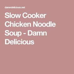 Slow Cooker Chicken Noodle Soup - Damn Delicious